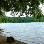 Petite plage ombragée