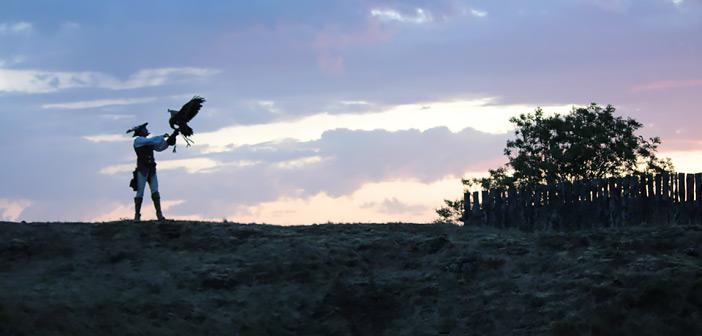 Spectacle de fauconnerie à la Forteresse de Polignac