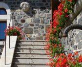 Michel Le Quéré vous ouvre sa galerie et son jardin