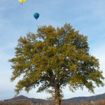 L'idée d'un balon