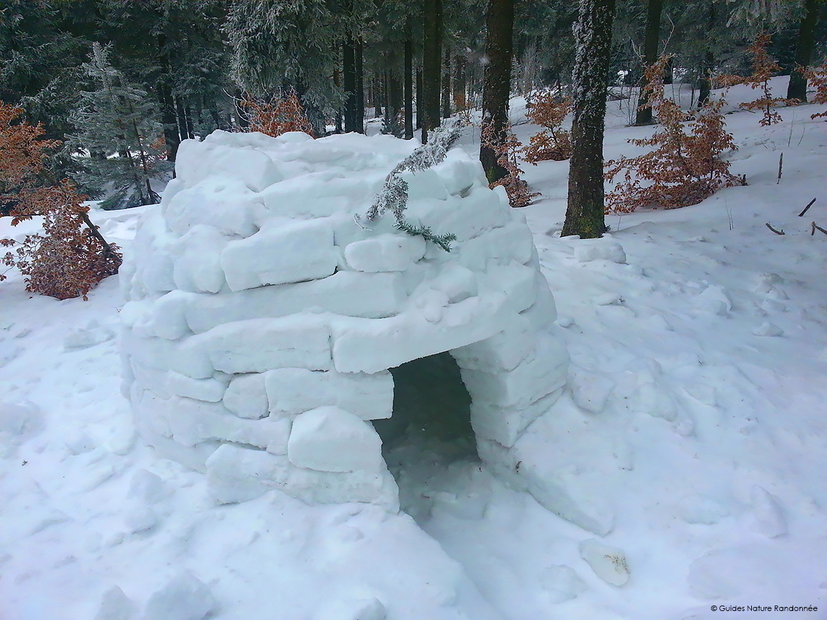 Igloo rencontre
