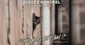 Expo Gilles Drockel à Brives-Charensac