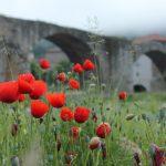 Pont pont gallo romain de Brives-Charensac