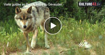 Parc des Loups du Gévaudan